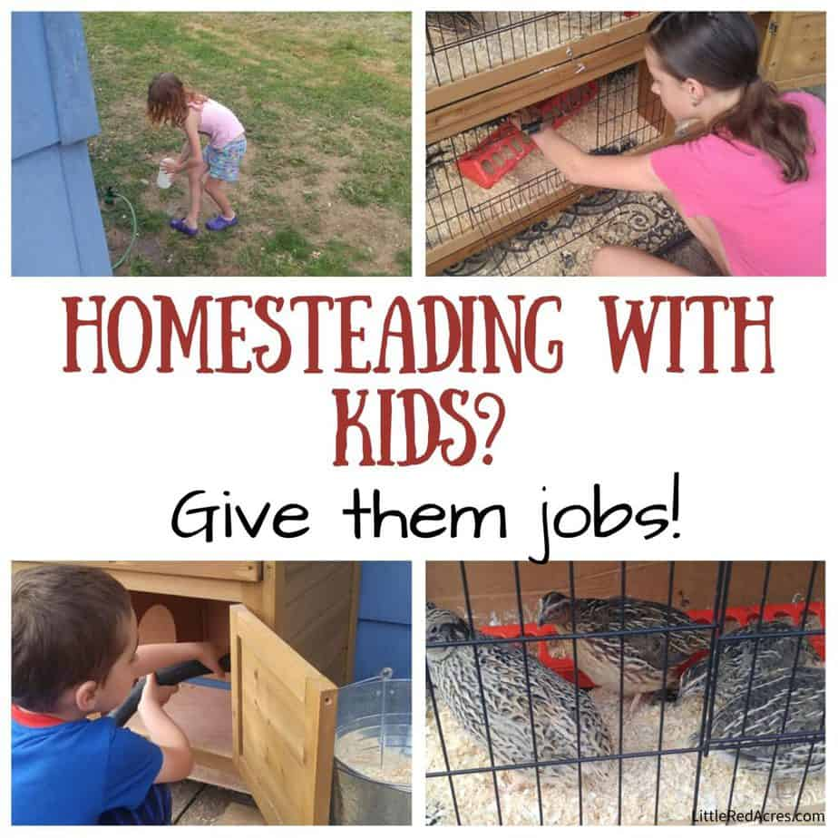Homesteading with kids, give them jobs