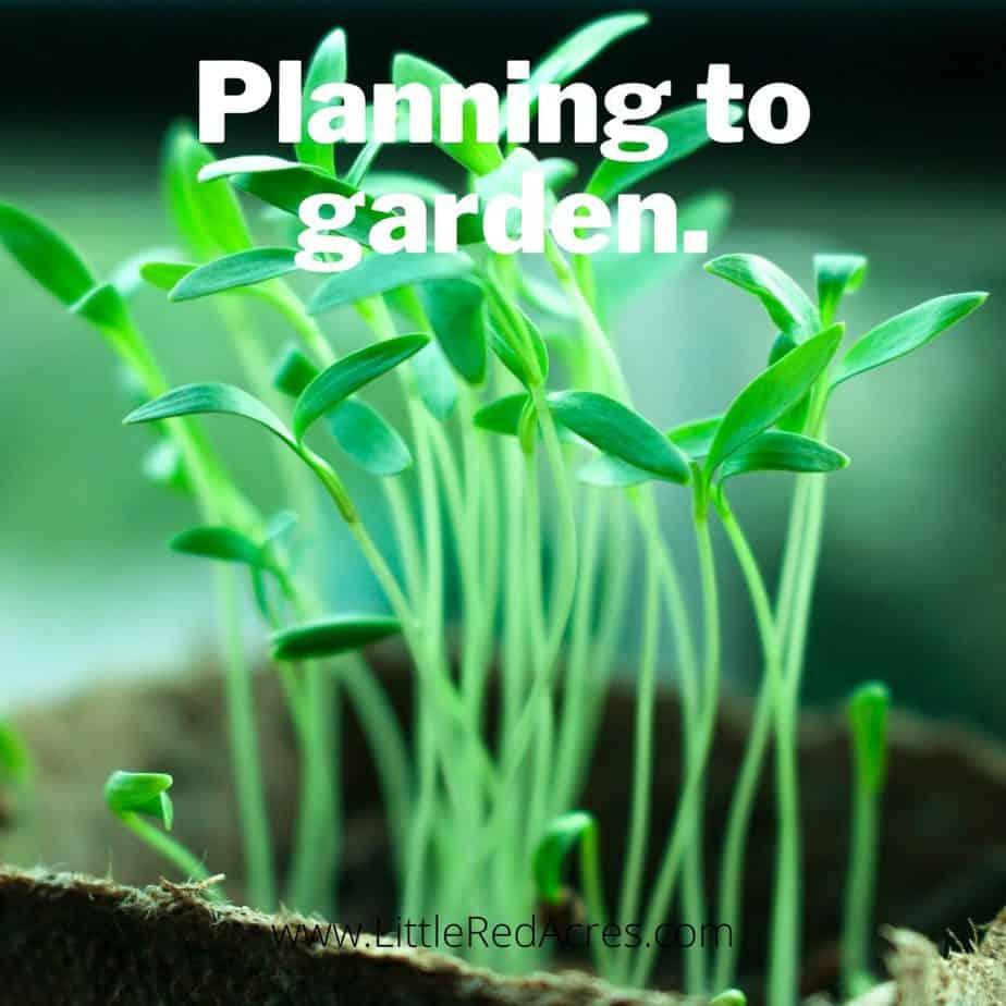 Planning to garden.