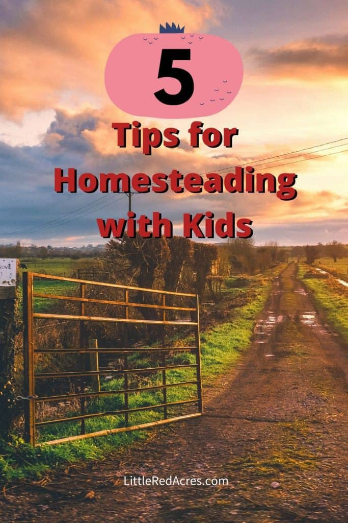 Tips for Homesteading with Kids