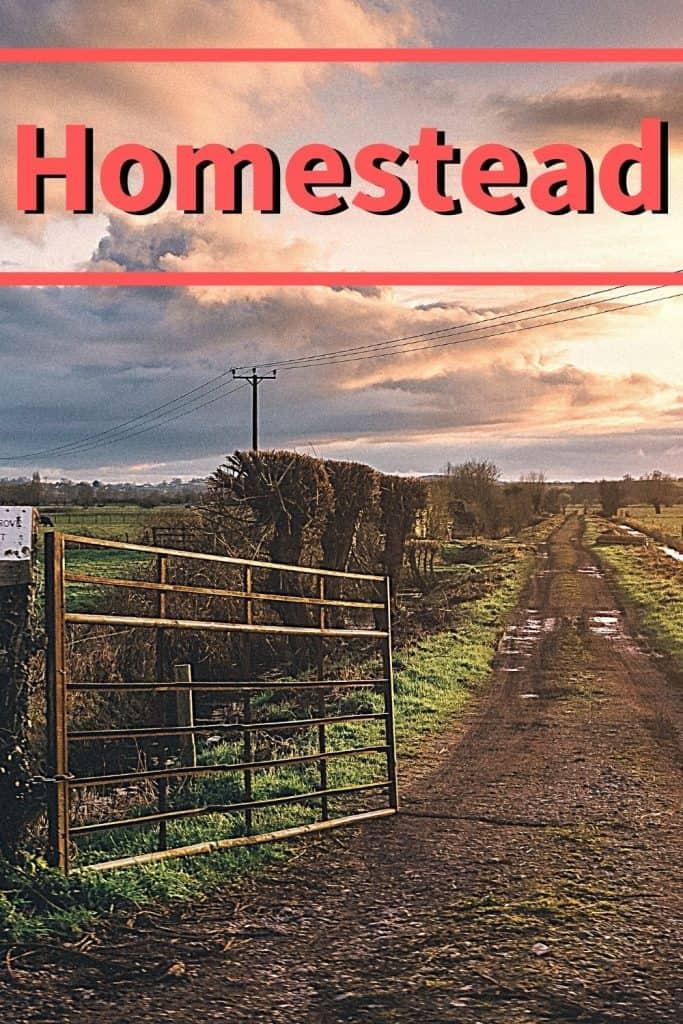 Little Red Acres - homesteading