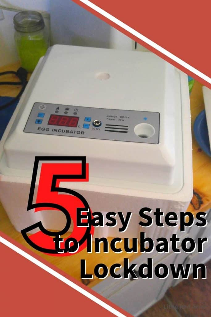 5 Easy Steps to Incubator Lockdown