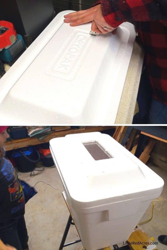 Foam Cooler Egg Incubator - top with window